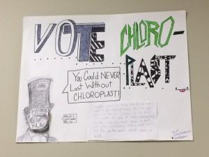 chloroplastposter